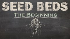 Seed Beds (The Beginning)
